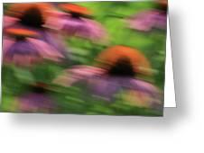 Dreaming Of Flowers Greeting Card by Karol Livote