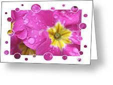 Drops Upon Raindrops 3 Greeting Card by Carol Groenen