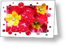 Drops Upon Raindrops 4 Greeting Card by Carol Groenen