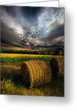 Drought Greeting Card by Phil Koch