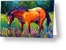 Dun Mare Greeting Card by Marion Rose