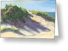 Dune Roses Greeting Card by Barbara Hageman