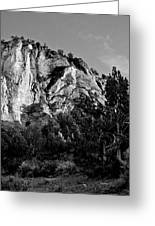 Early Morining Zion B-w Greeting Card by Christopher Holmes