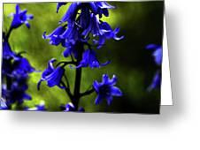 Electric Blue Greeting Card by Bonnie Bruno