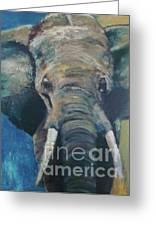 Elefant Greeting Card by Elisabeth De Vries