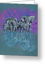 Elephant Family Greeting Card by John Keaton