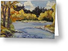 Elk River Fall Steamboat Springs Colorado Greeting Card by Zanobia Shalks