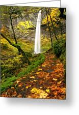 Elowah Autumn Trail Greeting Card by Mike  Dawson