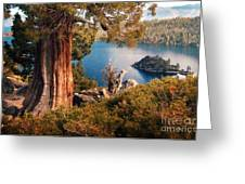 Emerald Bay Overlook Greeting Card by Norman  Andrus