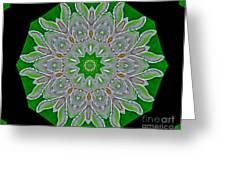 Emerald Green Greeting Card by Marsha Heiken