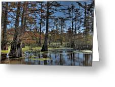 Enchanted Forest Greeting Card by Jane Linders