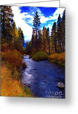 Evening Hatch On The Metolius River Photograph Greeting Card by Diane E Berry