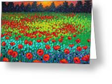Evening Poppies Greeting Card by John  Nolan