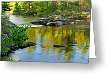 Evening Reflections At Lower Basswood Falls Greeting Card by Larry Ricker