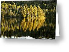Evening Reflections On Alder Lake Greeting Card by Larry Ricker