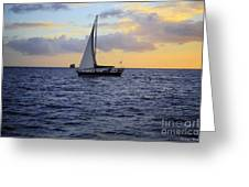 Evening Sail Greeting Card by Cheryl Young