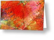 Exhilaration Greeting Card by Barbara Berney