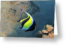Exotic Reef Fish  Greeting Card by Bette Phelan