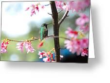Eye On Spring Greeting Card by Lynn Bauer