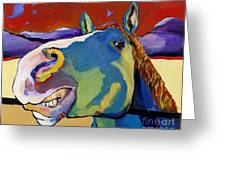 Eye To Eye Greeting Card by Pat Saunders-White