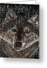 Eyes Of The Snow Wolf Greeting Card by Nick Gustafson