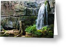 Fairy Waterfall Greeting Card by Douglas Barnett