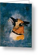 Falco Greeting Card by Brenda Thour