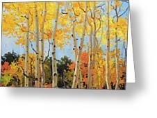 Fall Aspen Santa Fe Greeting Card by Gary Kim