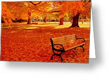 Fall Bench  Newburyport Ma Greeting Card by Suzanne DeGeorge