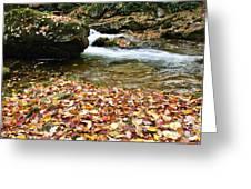 Fall Color Rushing Stream Greeting Card by Thomas R Fletcher