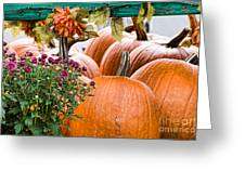 Fall Display Greeting Card by Edward Sobuta