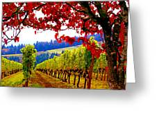 Fall In Dundee Greeting Card by Margaret Hood
