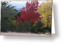Fall In Santa Fe Greeting Card by Brian  Commerford