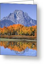 Fall Reflection At Oxbow Bend Greeting Card by Sandra Bronstein