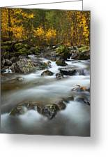 Fall Surge Greeting Card by Mike  Dawson