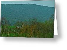 Farm Tucked Mountaintop  Greeting Card by Debra     Vatalaro