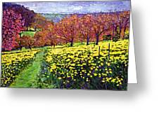 Fields Of Golden Daffodils Greeting Card by David Lloyd Glover