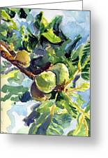 Figs Greeting Card by Suzanne  Frie