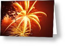 Fire In The Trees Greeting Card by Phill Doherty