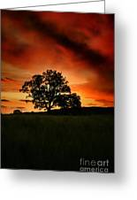 Fire On The Sky Greeting Card by Angel  Tarantella