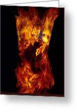 Fire One  Greeting Card by Arla Patch