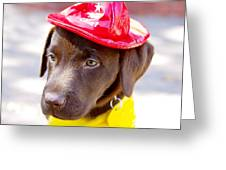 Firefighter Pup Greeting Card by Toni Hopper
