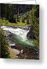 Firehole Canyon 2 Greeting Card by Marty Koch