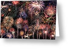 Fireworks Spectacular II Greeting Card by Ricky Barnard