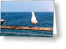 Fishing Greeting Card by J Perez