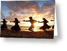 Five Hula Dancers On The Beach Greeting Card by David Olsen