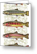 Five Trout Panel Greeting Card by JQ Licensing