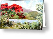 Flamboyan By The Lake Greeting Card by Monica Linville