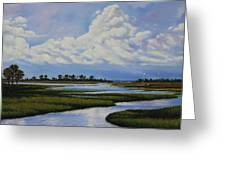 Florida Greeting Card by Rick McKinney
