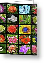 Flower Favorites Greeting Card by Gwyn Newcombe
